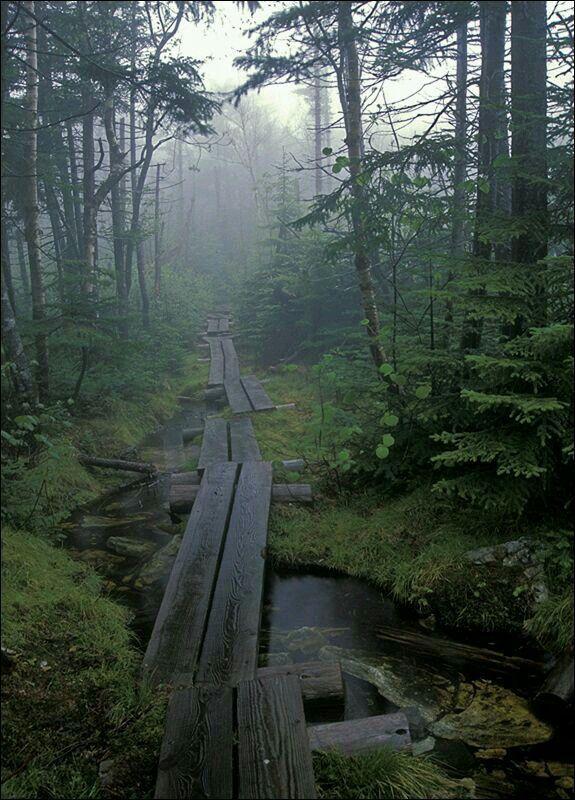Appalachian trail, Vermont USA