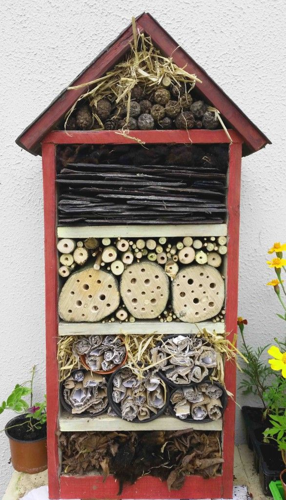 3 Reasons Why We Need More Bug Hotels
