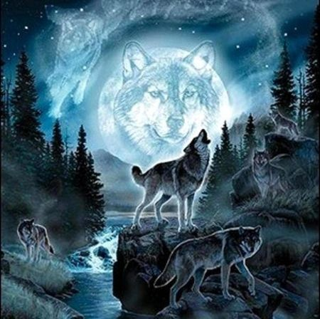 'Call of the wild'..... - spirit, moon, wolves, mystical, animals                                                                                                                                                     More