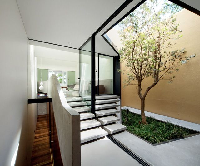 fine: Idea, Living Rooms, Minis Gardens, Skylight House, Sky Lights, Inside Outside, Architecture, Indoor Trees, Modern Interiors