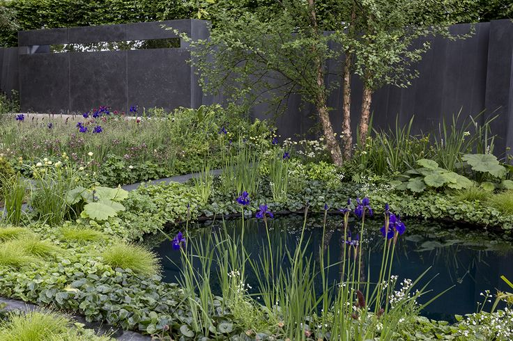 Soften the edges of a circular pond with planting. Discover three ways to improve a pond at http://www.gardenersworld.com/how-to/projects/garden-diy/three-ways-to-improve-your-pond/4777.html Photo by Paul Debois.