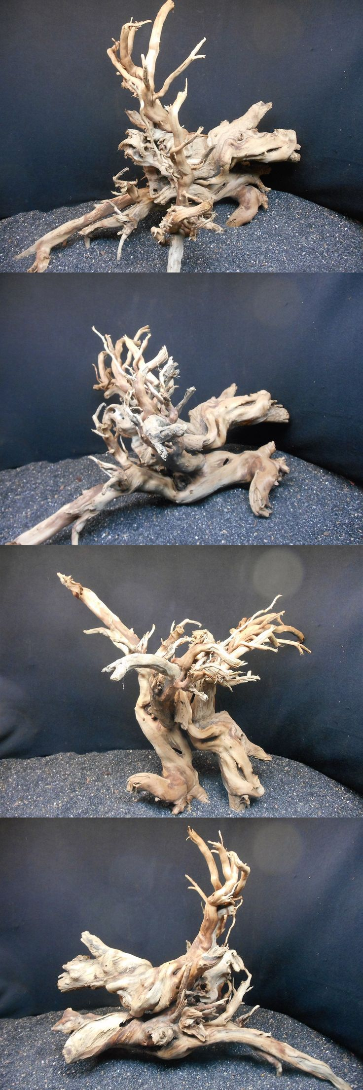 Decorations 66789: Mangrove Driftwood Fish Aquariums Reptiles Bonsai Plant Display Pond Taxidermy -> BUY IT NOW ONLY: $130.53 on eBay!