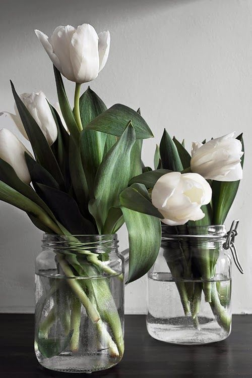tulips in glass jars - Поиск в Google
