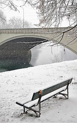 Snow Under The Bridge. Turin, Italy