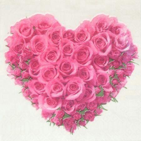 106 besten bunte rose bilder auf pinterest sch ne blumen bunte rosen und blumenbilder. Black Bedroom Furniture Sets. Home Design Ideas