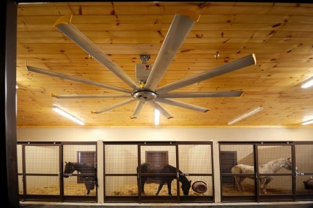 Air. Ventilation in the barn! Healthy, happy animals + owners.
