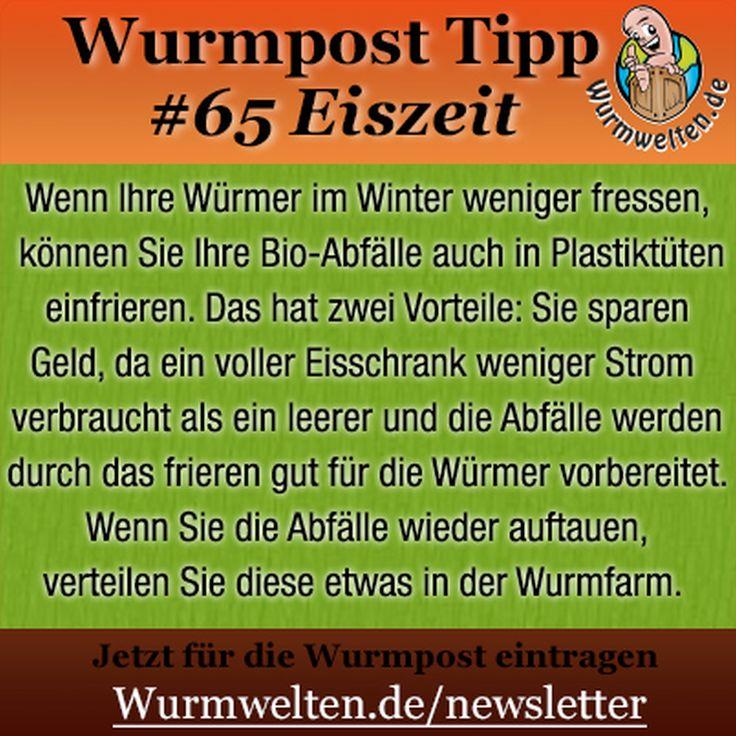 Berliner Kiste Wurmkiste 14 besten wurmkisten anleitung bilder auf anleitungen