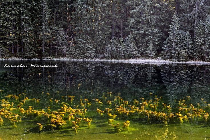 Lake Vrbicke Pleso in Low Tatras mountains, Slovakia