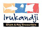 Irukandji Shark & Ray Encounters   Enjoy a shark-themed birthday party