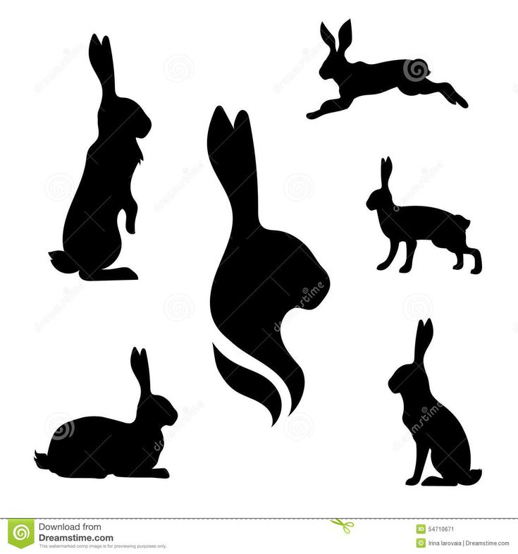 jack rabbit silhouette...