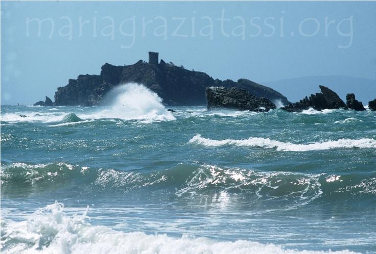 Italy, Tuscany, Maremma Toscana, Punta Ala, Sparviero Island