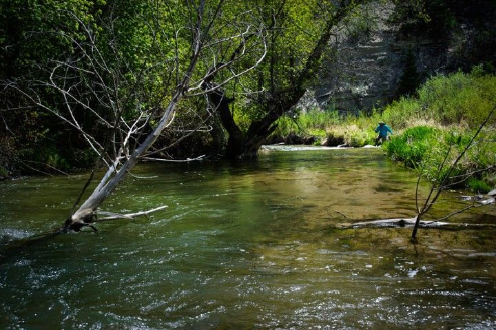 8 best roofvis vrouwen images on pinterest women fishing for Utah fish finder