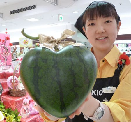 Techniques for growing vegetables in unnatural shapes. At least one Japanese farmer has perfected the art of growing heart shaped watermelons, which cost around $160 each.