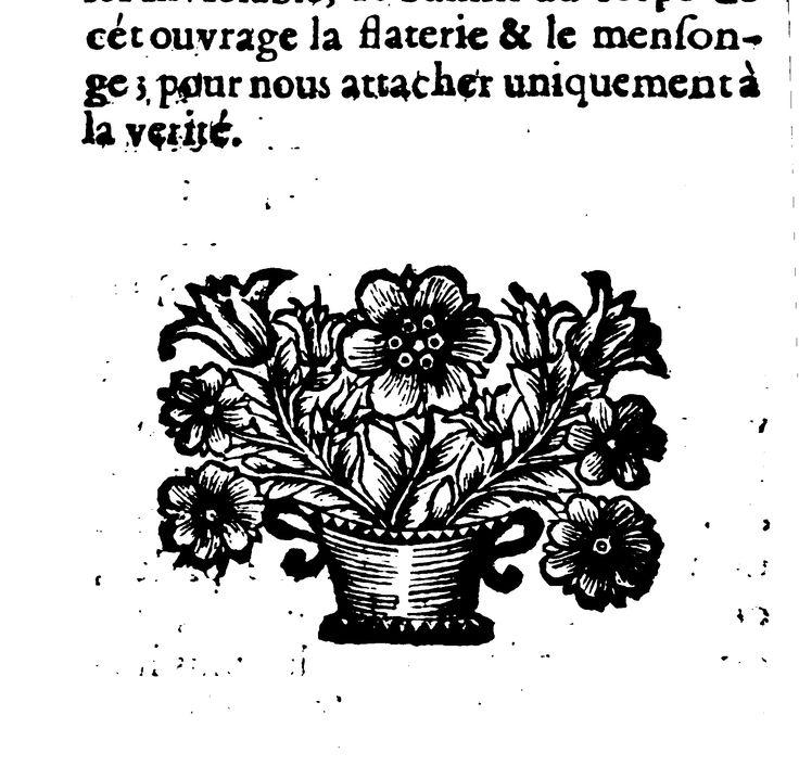 Vignette (326687 T. 01)