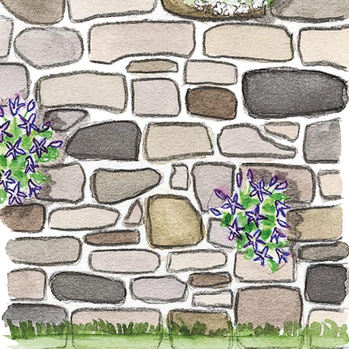 Gartenmauer Bauen Praktische Tipps Und Tricks Gartenmauer Gartenmauern Steinmauer Garten