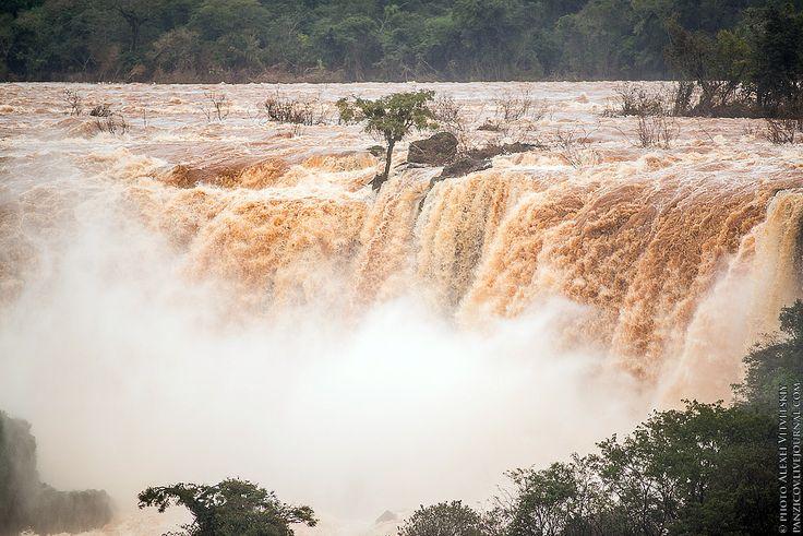 Фото - путешествия по миру: Бразилия (Часть 1): Водопады Игуасу
