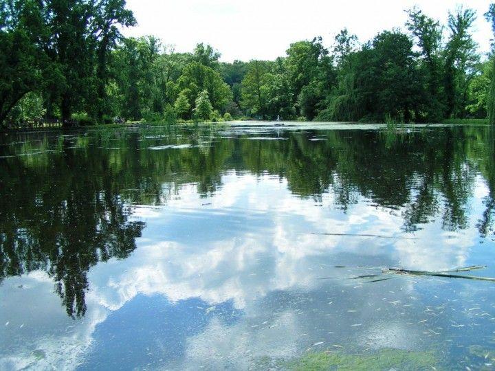 Lake in Stromovka Park, Prague, The Czech Republic