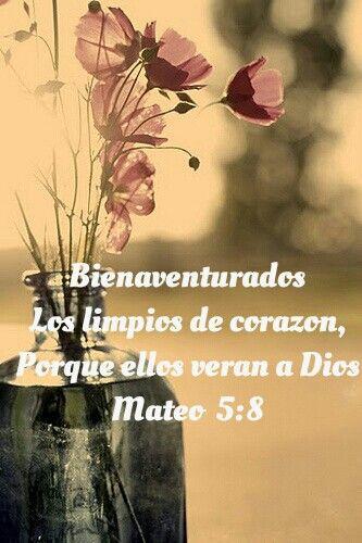 Mateo 5:8 Bienaventurados los de limpio corazón, porque ellos verán a Dios.
