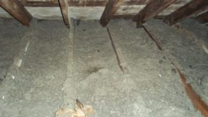 Old Attic Insulation Material