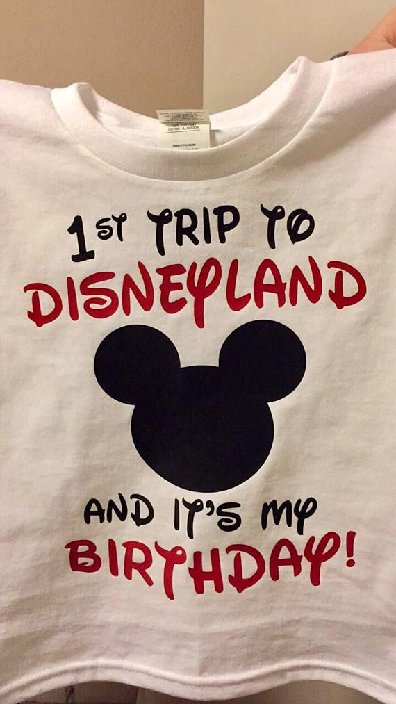 Celebrating A Birthday With First Trip To Disneyland This Shirt Is Perfect Meet Your Favorite Disney Pals For The Time
