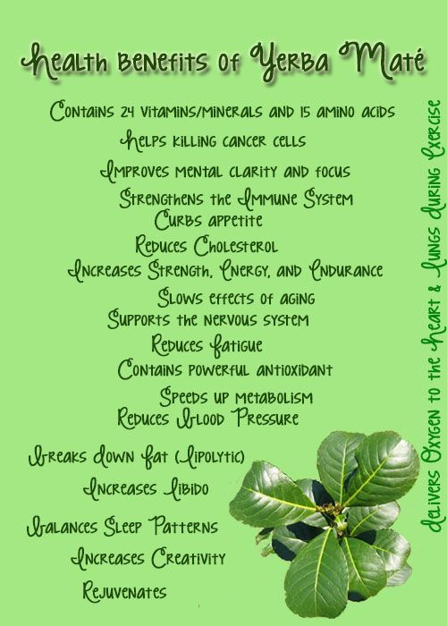 Health benefits of #Yerba Mate. One of the amazing ingredients in LaVie™ wich was born from Mother Nature's most energizing, healthful and enchanting botanicals. To order go to http://www.sandrabjork.net/lavie.html