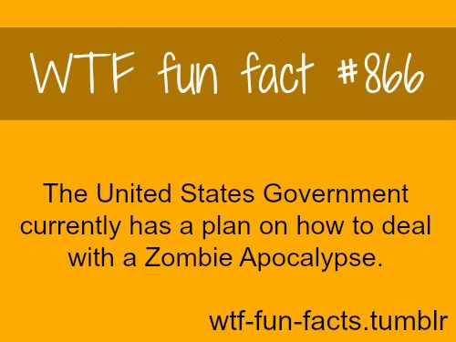 zombie apocalypse, shit is getting real  MORE OF WTF-FUN-FACTS are coming HERE  funny and weird facts ONLY