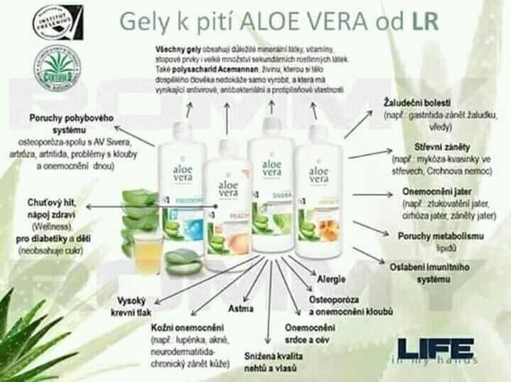 LR produkty v novom šate | LR HEALTH & BEAUTY | Pinterest