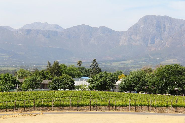 The Best of Cape Town, South Africa, in 10 pictures. Wine lovers (and others) Stellenbosch, at the heart of the Winelands is a must-see.