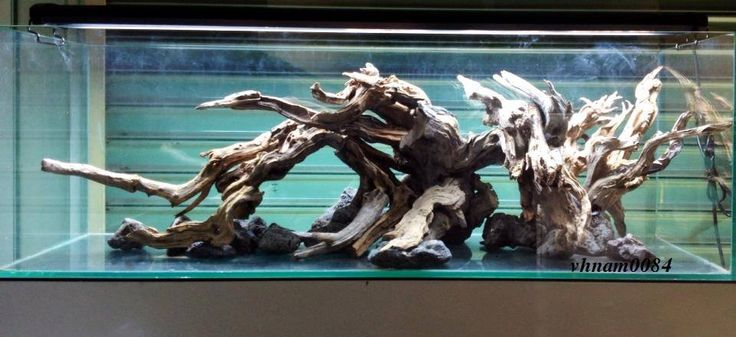Hardscape driftwood by hoai nam vu from vietnam final for Fish tank driftwood