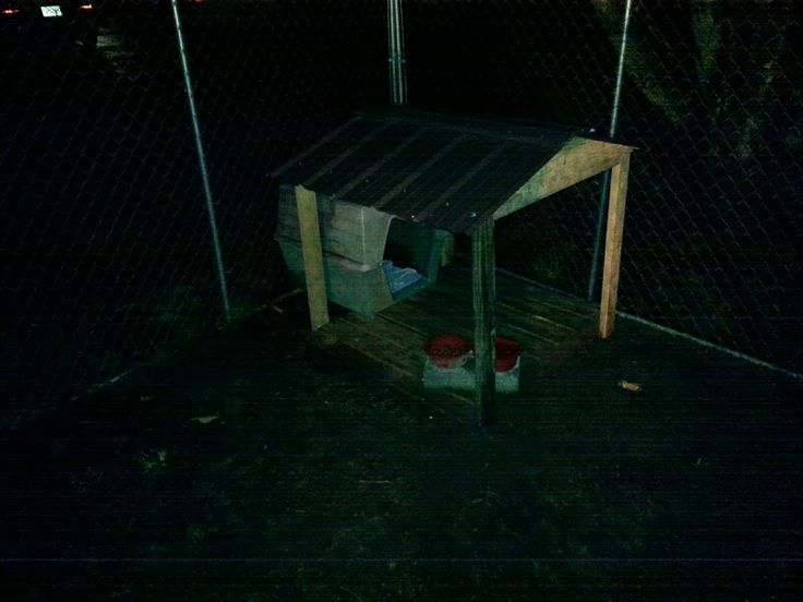 Porch for dog house, I built outta a pallet and scraps