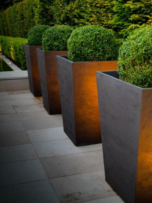 Modern garden design examples of illuminated plants planters