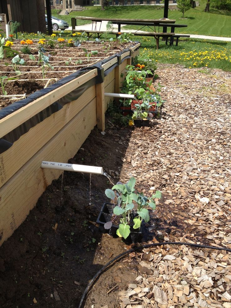 Gravel wicking bed full - water overflowing.