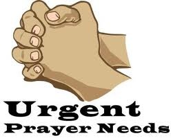 URGENT PRAYER NEEDED 2/18/13p.m.!!!Please pray now for 3 yr old girl, Carmen H. Her father was backing up in a vehicle & realized he had ran over something so pulled back forward to see what he had ran over.He found that he had ran over Carmen. She is in Children's Hospital, in Critical Condition & the doctors say that it does not look good, there is swelling on the brain.I know no further details.  BUT, BUT I serve a great big GOD & HE CAN DO ANYTHING. PRAY FOR A MIRACLE IN THIS…