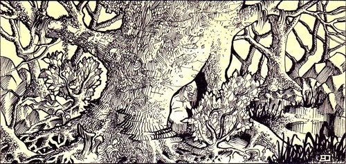 The mad hermit of the forest, by Erol Otus, from D module B2: The Keep on the Borderlands, written by Gary Gygax, TSR, 1981.