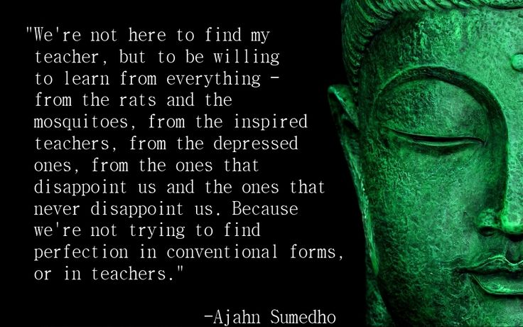 Ajahn Sumedho Quote 20