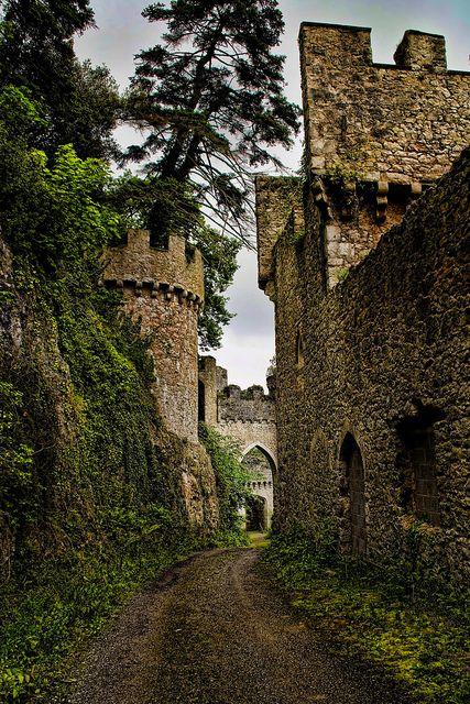 Gwyrch Castle by Wayne Rushworth photography, via Flickr