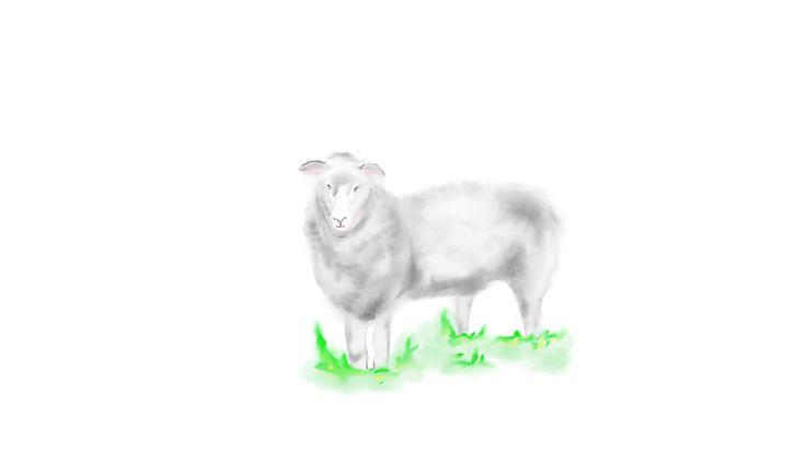 Digital Art - Sheep  http://www.ladyfying.com/2017/02/11/counting-sheep-not-work/