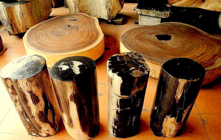 Petrified Wood Stump Tables