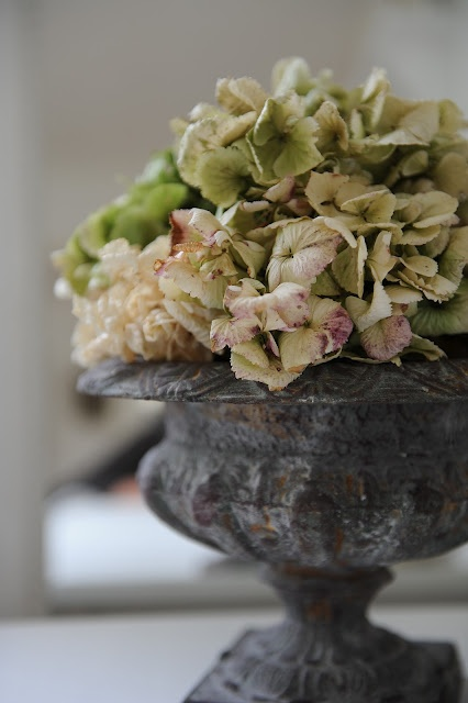 cast iron urn and dried hydrangea