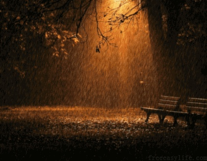 Rainy night  Rain…  Faint light…  Silence and nothing more.  I like the night,silence kick out all fretful even the body,only the thought flashing…  And you?