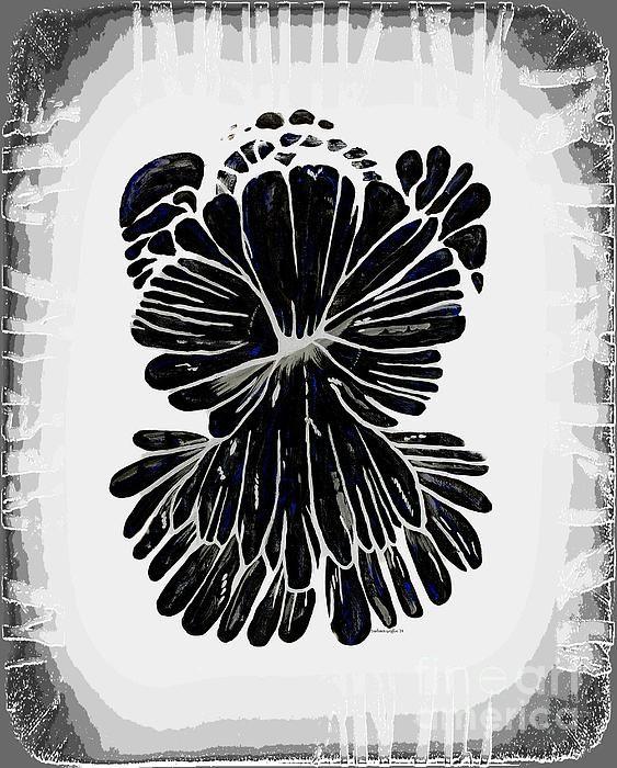 Chrysanthemum Stone Guardian Angel BW