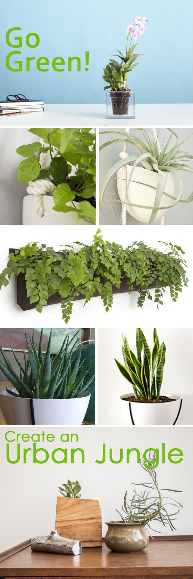Indoor Window Planter Part - 16: Are You An Urban Jungle Blogger Or Just A Lover Of Luscious Greenery In  Your Home. Indoor Window BoxesIndoor ...