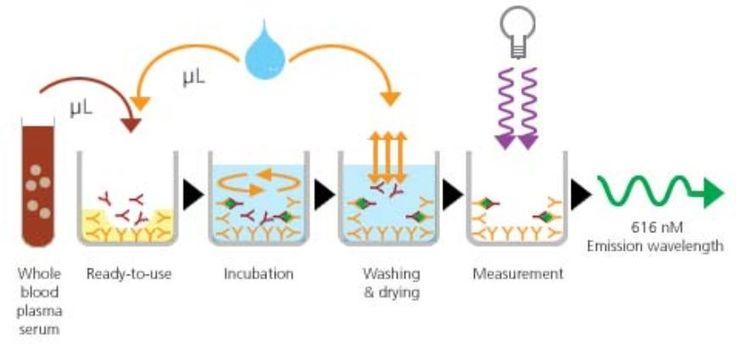 AQT90 FLEX immunoassay steps. Detection is based on time resolved fluorescence (TRF).