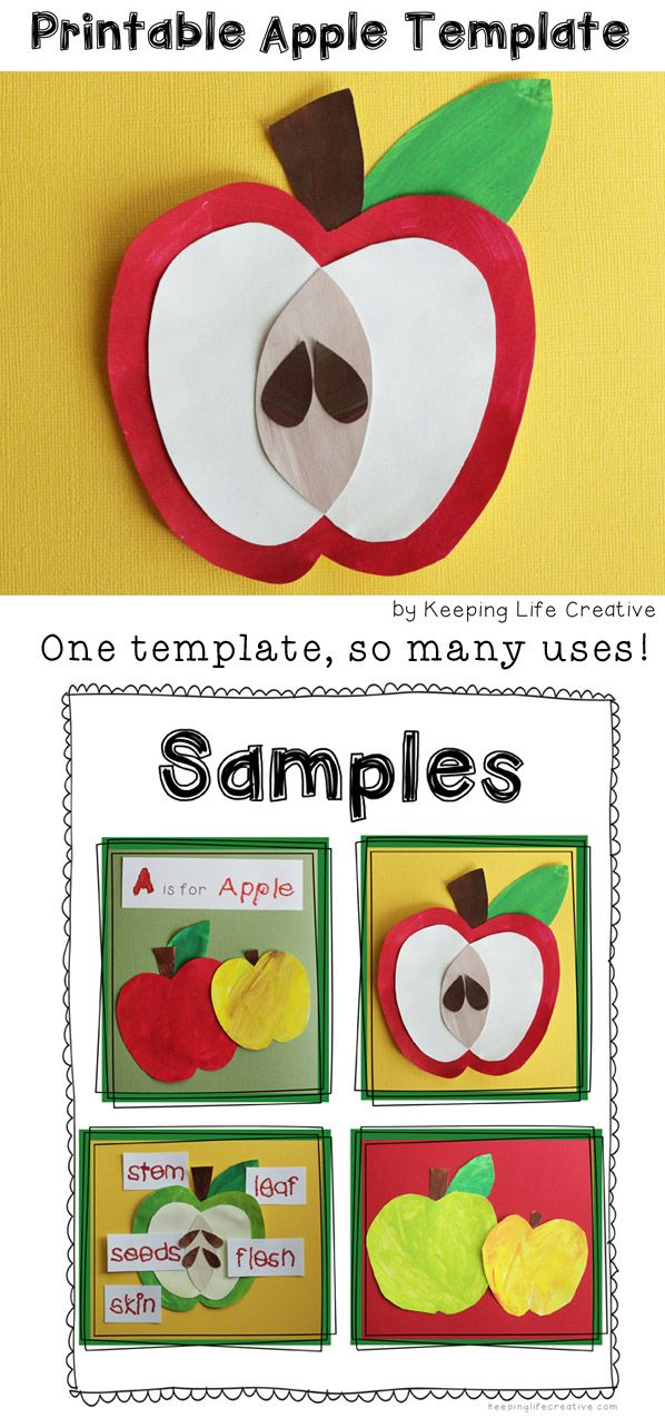 One simple template, so many uses! Download and print this simple apple template for an adorable art project, or pattern for your flannel board and bulletin board figures. $