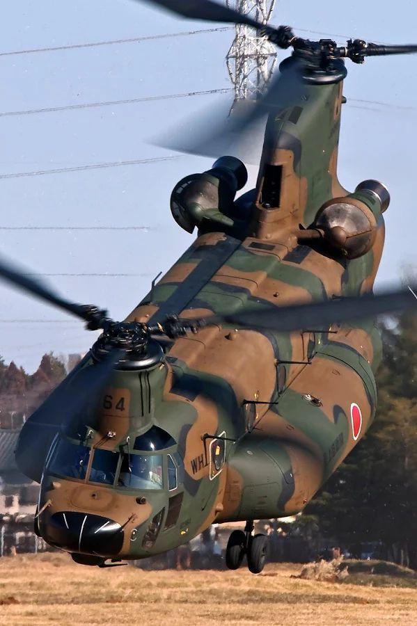 Foto: BOEING CH-47 JAF. JAPAN AIR FORCE.