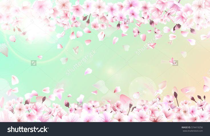 Blooming cherry. Spring background. Falling sakura pink petals. EPS 10 .
