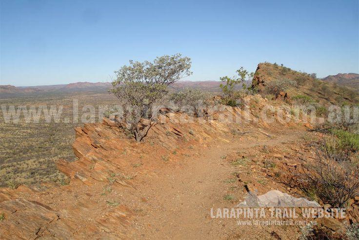 The trail meandering along ridgelines on Section 1, Larapinta Trail. © Explorers Australia Pty Ltd 2013