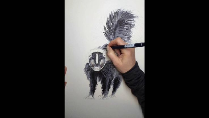 """Making of """"The Striped Skunk"""" by Brett Blumenthal"""