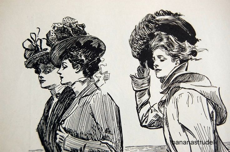 1905 Charles Dana Gibson #vintageillustration #illustration