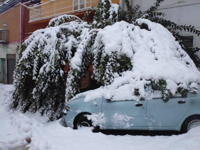 Ginestra (Pz). La neve provoca cadute di alberi e rami nel centro abitato